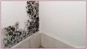 Taches Noires Sur Pavés Autobloquants : hydrofuges par injection pour murs humides mise en uvre ~ Melissatoandfro.com Idées de Décoration
