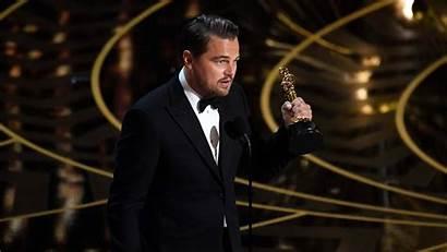 Leonardo Dicaprio Oscar Wallpapers Celebrities Male Resolution