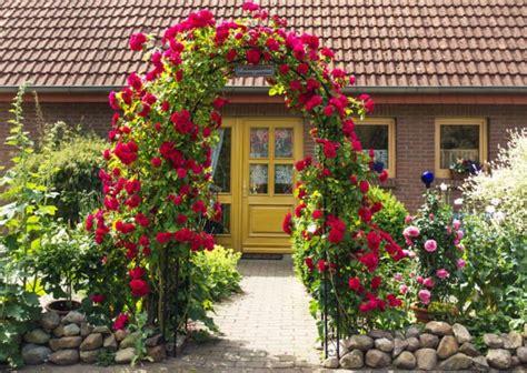 rosenbogen selber bauen so gelingt das diy projekt heimwerkertricks net