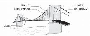Suspension Bridge Diagram