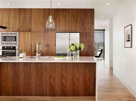 walnut cabinets kitchen modern best 25 walnut kitchen cabinets ideas on 6988
