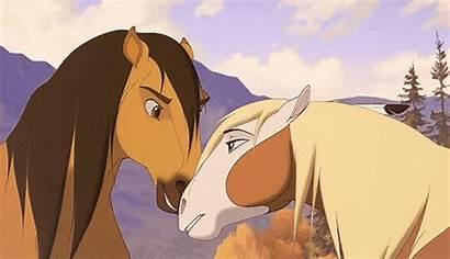 Spirit Stallion Cimarron Dreamworks Rain Horse Animated