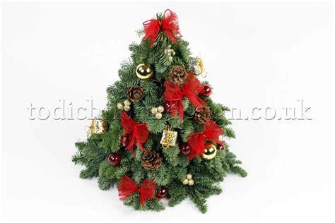 find   minute holiday gifts christmas flower