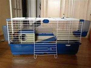 Cage Lapin Maison Une Cage Fait Maison Pour Mon Lapin Sam Les