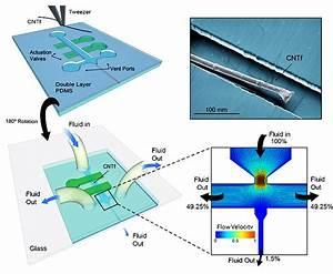 Fast Fluids Pull  U0026 39 Wet Noodle U0026 39  Electrodes Into Brain