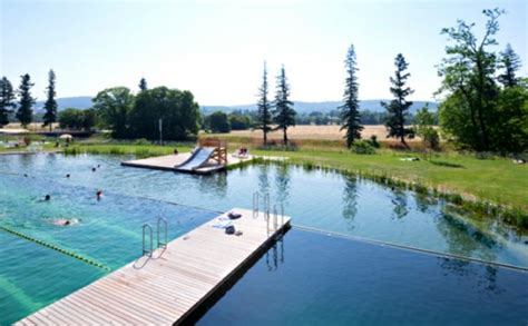 schwimmbad ohne chlor schwimmbad ohne chlor garten pool ohne chlor naturbad