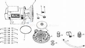 Letro Booster Pump - Current Parts