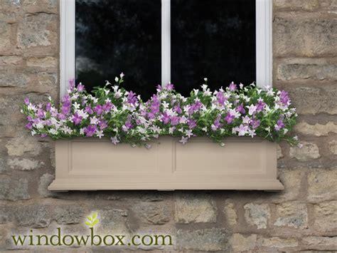 prestige window box clay  watering window boxes