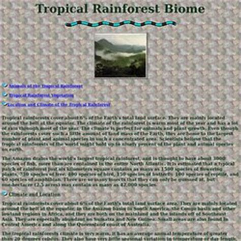 Earth Floor Biomes Tropical Rainforest by Rainforest Biomes Pearltrees