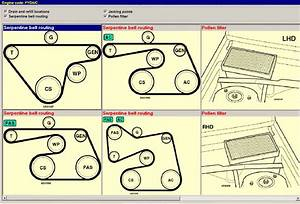 Ford Focus Tdci Auxiliary Belt