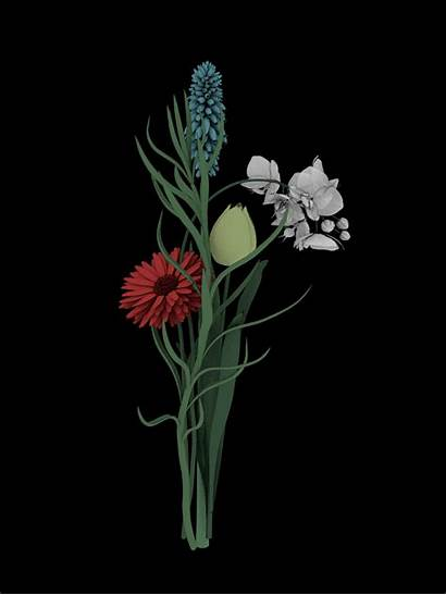 Gifs Plants Between Sasha Flowers Plant Colossal