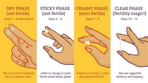 Know When You're Fertile