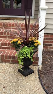 17, Best, Images, About, Urn, Plantings, On, Pinterest