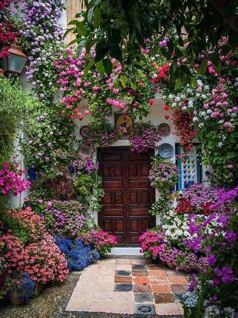 outdoor flowers 25 best ideas about balcony flowers on pinterest balcony planters balcony flower box and
