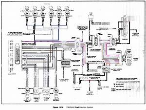 Ve Commodore Wiring Diagram