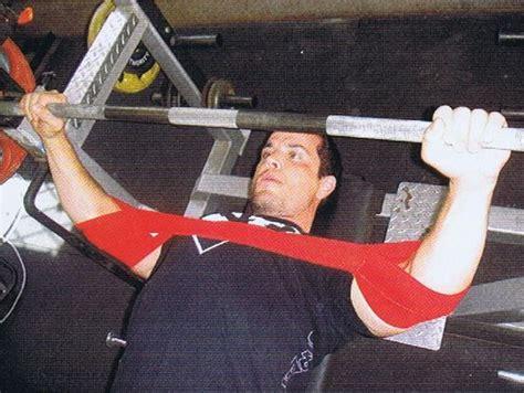 slingshot bench press slingshot for bench press 28 images slingshot showdown