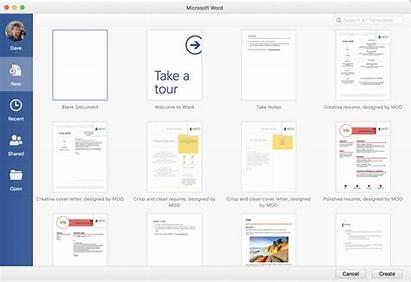 Microsoft 365 Office Word Mac Update User