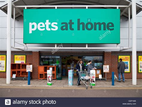 pets at home store newmarket suffolk uk stock photo