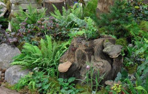 stumperies recycling wood  creating beautiful garden