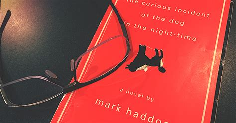Book Review: The Curious Incident of the Dog in the Night