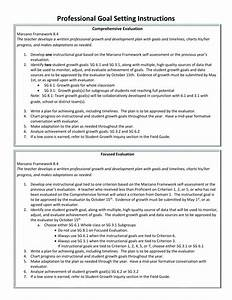 Professional Goal Instructions And Worksheet