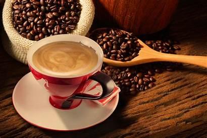 Premium Meinl Julius Coffee Cup Bean Level