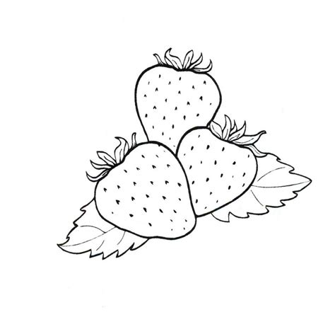Coloring Strawberry by Strawberry Coloring Pages To And Print For Free