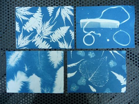 where to buy sun print paper cyanotype prints artclubblog