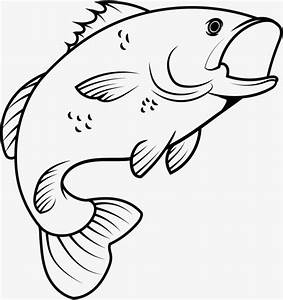 Jumping Fish Drawing | www.pixshark.com - Images Galleries ...