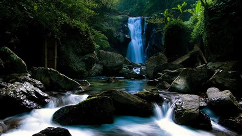 Cool Nature Picture by Cool Nature Background Wallpapers Pixelstalk Net