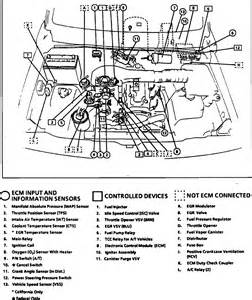 similiar 1996 geo prizm fuel pump wiring keywords geo prizm likewise alternator 1996 tracker engine diagram repair