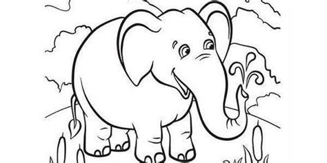 disegni per bambini da scaricare gratis disegni da colorare 45 animali da scaricare e stare gratis