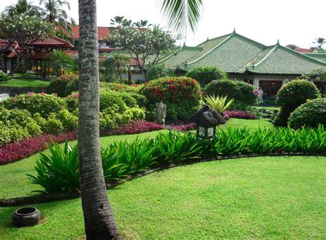 small tropical plants tropical garden design plants pdf