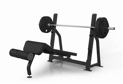 Equipment Gym Commercial Bench Fitness Olympic Matrixfitness
