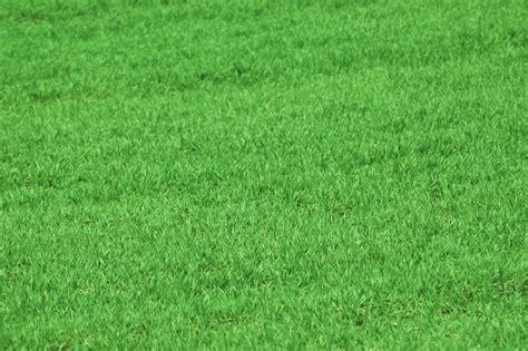 Michigan Greens Keeper, Inc