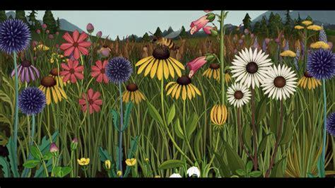 azuma makoto story  flowers  botanical animated