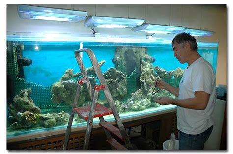 comment nettoyer les decors d aquarium la fabrication d aquarium par abri sous roche