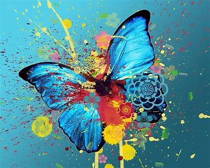 Butterfly Fanpop Butterflies Painting Abstract Paintings Background