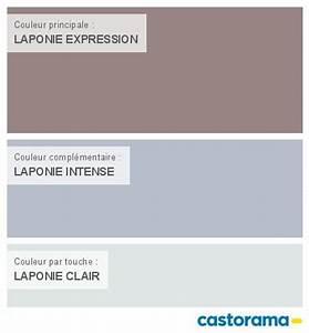 Castorama nuancier peinture mon harmonie peinture for Peinture couleur gris taupe 9 nuancier colours castorama