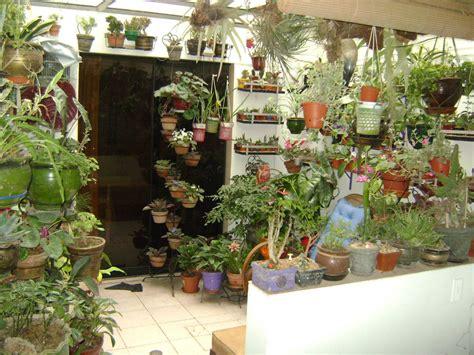 jardines  macetas utilizacion de espacios pequenos