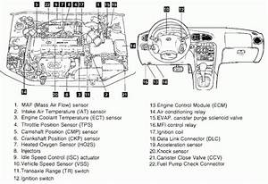 2000 Hyundai Elantra Engine Diagram