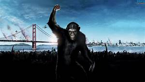 Dawn of the Planet of the Apes (2014) | Movie HD Wallpapers