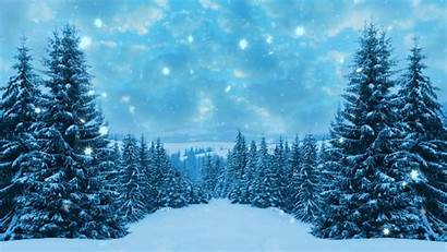 Winter Background Happy Christmas Backgrounds Footage 1080