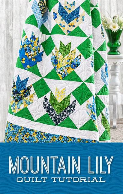 Quilt Patterns Quilts Mountain Quilting Lily Strip