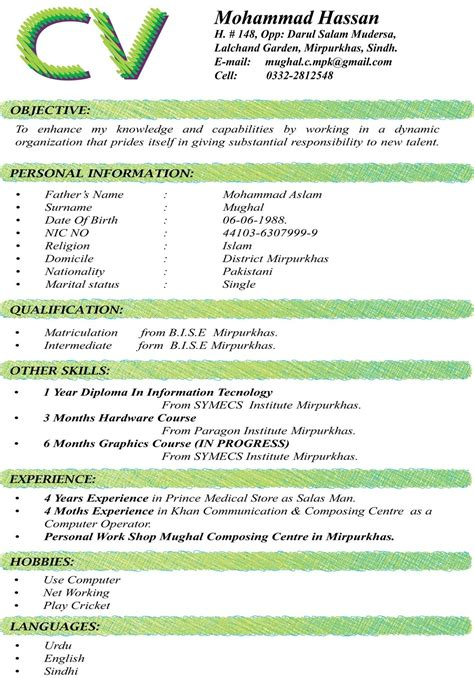 What To Put In Other Skills On A Resume by Curriculum Vitae Format For Information Technology With