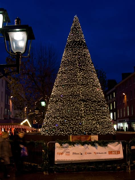 christmas tree in york free stock photo public domain