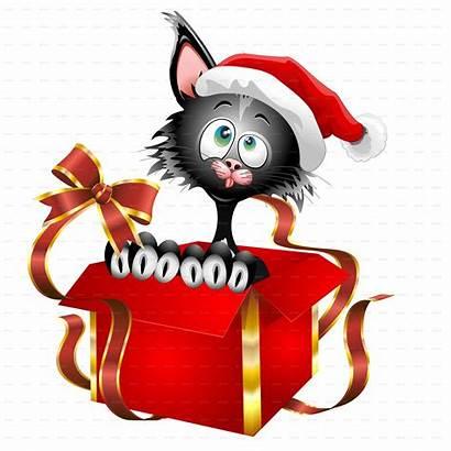 Christmas Cat Cartoon Cats Gift Funny Vector