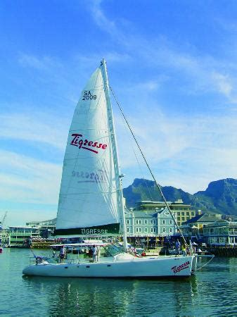 Catamaran Cape Town Tours by Tigresse Catamaran Cape Town Central All You Need To