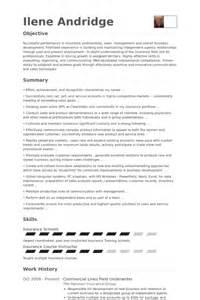 insurance underwriter resume sles insurance underwriter resume