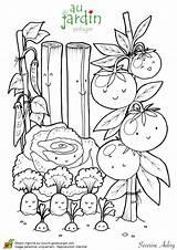 Coloring Plantation Fruits Le Adult Jardinage Sur Vegetable Vegetables Colouring Class Haricot Potager Végétal Hugolescargot Orto Template Dessin Les Agenda sketch template